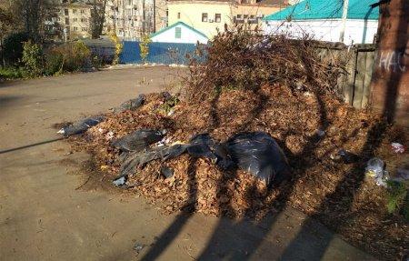 В Вязьме внедрили раздельный сбор мусора