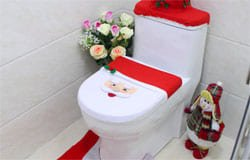В качестве новогоднего подарка вязьмичи получат... туалет