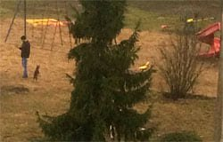 В микрорайоне Березы появилась новогодняя елка