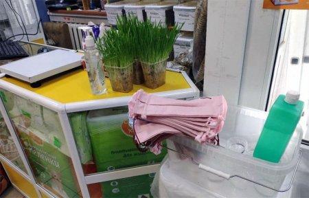 Магазин Мур Мяу выступил с акцией выдачи бесплатных масок и антисептиков