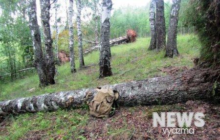 Полиция Вязьмы завершило дело о браконьерстве в Телепнево