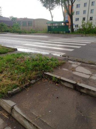 На улице Ленина появился необычный пешеходный переход