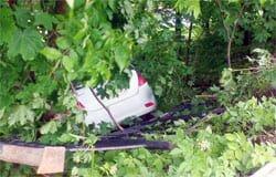 В Вяземском районе автоледи вылетела в кювет