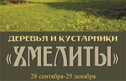 Хмелита приглашает на выставку «Деревья и кустарники Хмелиты»