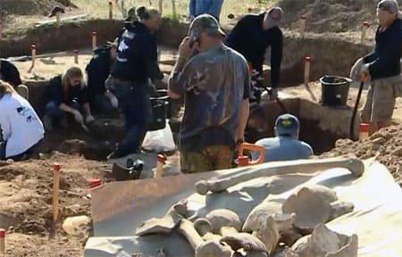 В Вязьме перезахоронят останки французских солдат