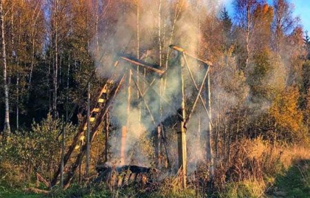 В Вяземском районе сгорела охотничья вышка